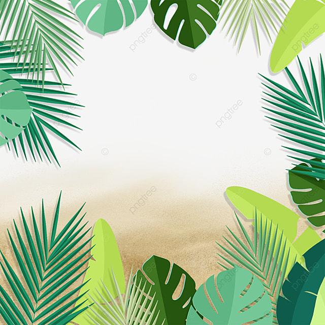 summer tropical green leafy plant beach