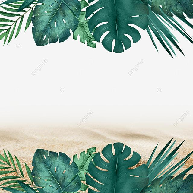 summer tropical plants beach summer green leaves green plants