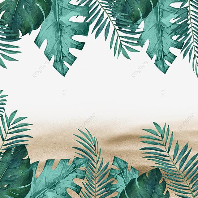 tropical plants green plants summer summer beach