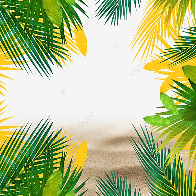 tropical plants summer beach summer