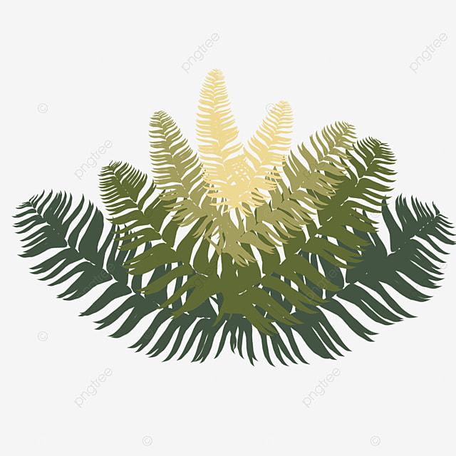 green fern clip art