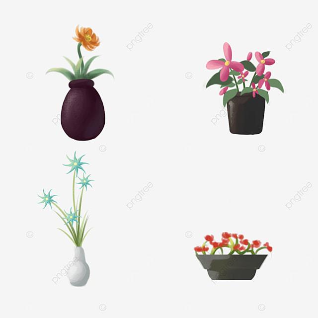 indoor green plants