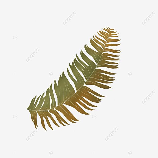 single branch fern clip art