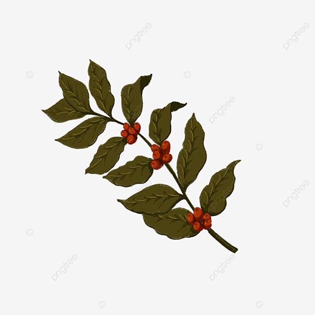 retro coffee leaves clipart