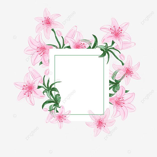 watercolor lily border