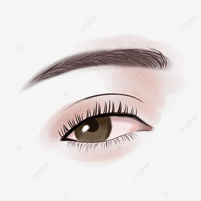 Ojos De Cejas De Mujer Realista, Clipart De Cejas, Ceja, Ojo PNG y PSD para  Descargar Gratis   Pngtree