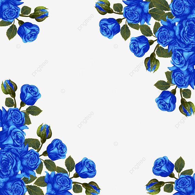Blue Rose Blue Gold Flower Floral Plant, Blue Rose, Blue Gold, Flowers PNG and PSD