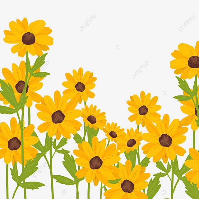 ethiopian new year beautiful flowers