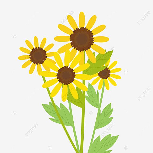 ethiopian new year festive flowers