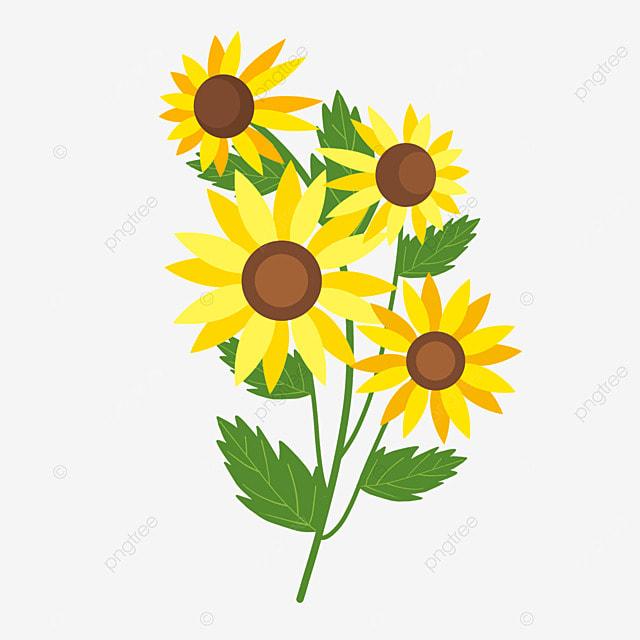 ethiopian new year spring flowers