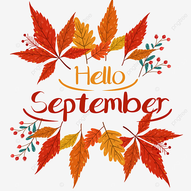 hello september autumn maple leaf red