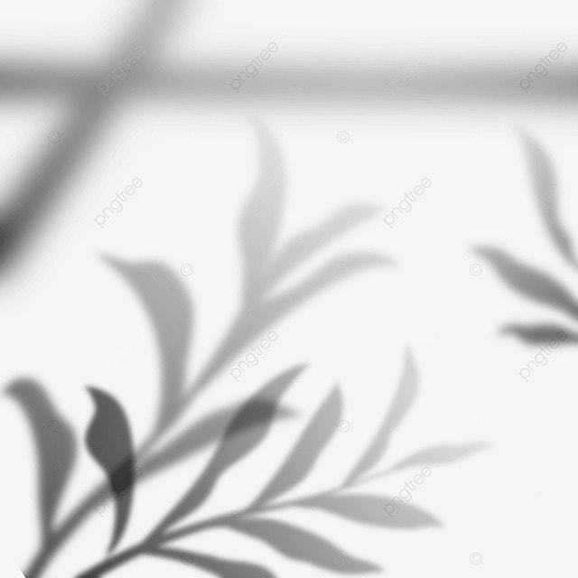 creative plant window projection