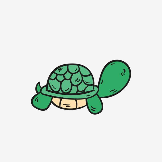 Dibujos Animados De Color Calido Mar Tortuga Criatura Marina Dibujos