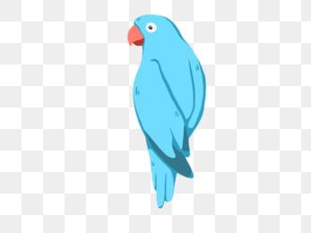 鸚鵡小鳥鸚鵡舌頭鳥, 動物, 鳥, 藍鳥 PNG和PSD圖片素材