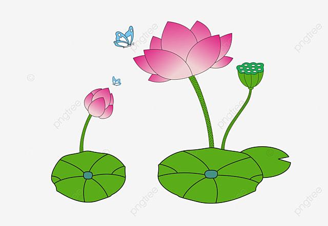 Loto Dos Desenhos Animados Folha De Lotus Lotus Lotus Pintados A
