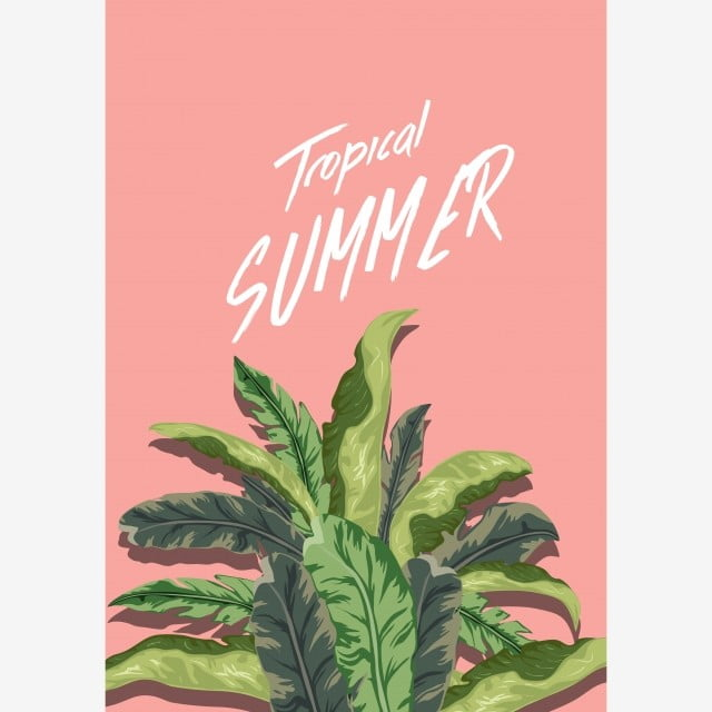 Poster Flora Dan Fauna Tropis Tropis Tanaman Latar Belakang Burung Beo Bunga Burung Etsa Png Dan Vektor Dengan Latar Belakang Transparan Untuk Unduh Gratis