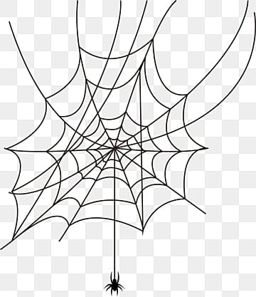 Spider web big. Png vector psd and