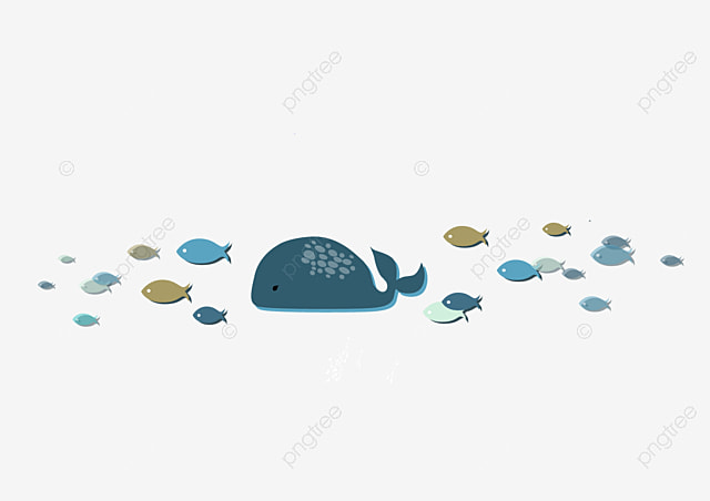 Cartoon Lovely Whale Fish School Travel Big Fish A Group Of Fish Png And Vector With Transparent Background For Free Download