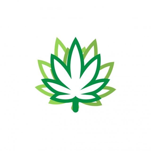 gambar daun ganja logo ikon desain grafis template bio hijau daun png dan vektor untuk muat turun percuma gambar daun ganja logo ikon desain
