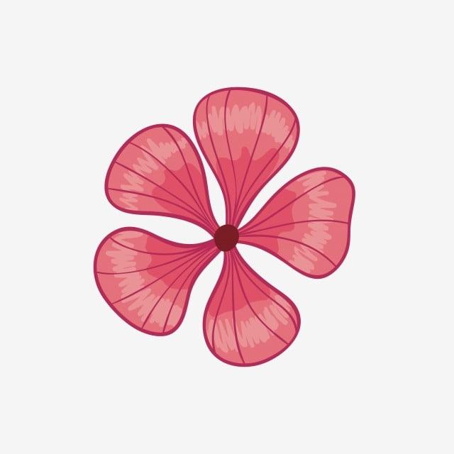 Cinco Petalas Bonita Bela Flor Linda Bonito Cinco Flores Dos