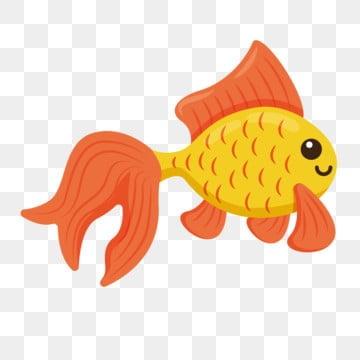 золотая рыбка декоративная рыба через мультфильм рыба, Рыба клипарт, прекрасный, милый рыбы PNG ресурс рисунок и векторное изображение
