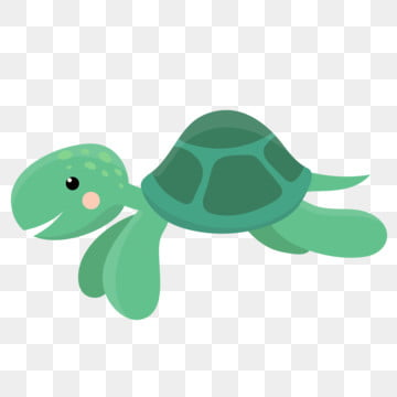 Turtle Cartoon Png Images Vector And Psd Files Free Download