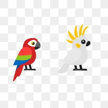 鳥類小鳥 鸚鵡 金剛鸚鵡 鳳頭鸚鵡, 可愛的鸚鵡, 卡通鳥類美麗鸚鵡插畫, 金剛鸚鵡 PNG圖片素材和向量圖