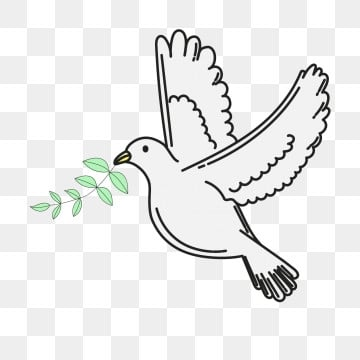 Flying Bird PNG Images | Vector and PSD Files | Free