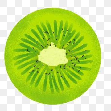 Kiwi Slice Png