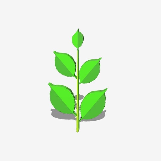 3d Style Cartoon Minimalistic Plant Decorative Green Leaves, Green
