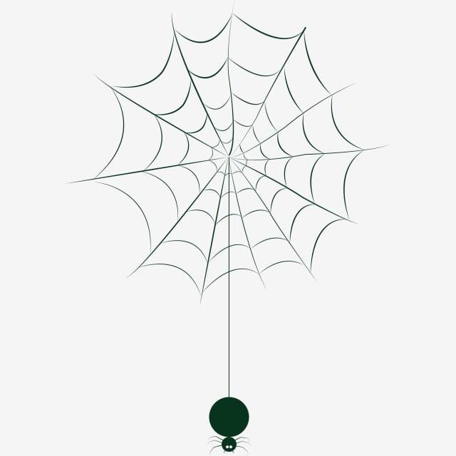 Halloween Spider Web Elements Spider Spider Web Black And White