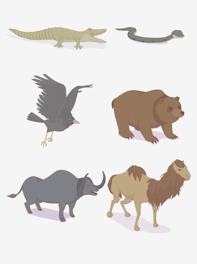 9800 Gambar Kartun Binatang Buaya HD