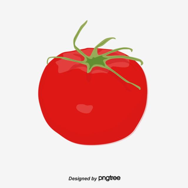 Fruits Et Légumes Simples Dessinés à La Main Dessin Animé