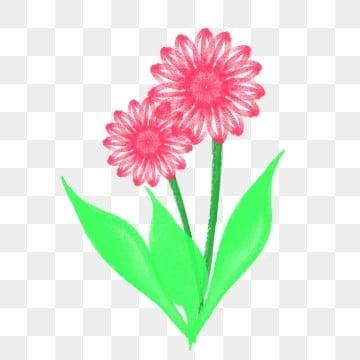 Bunga Animasi Lucu Kartun Yang Berwarna Warni Png Vektor Psd