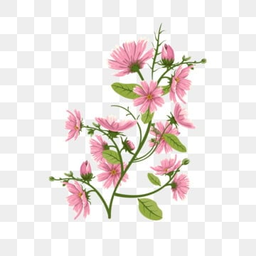 Commercial Use Flower Png Images Vector And Psd Files Free Download On Pngtree