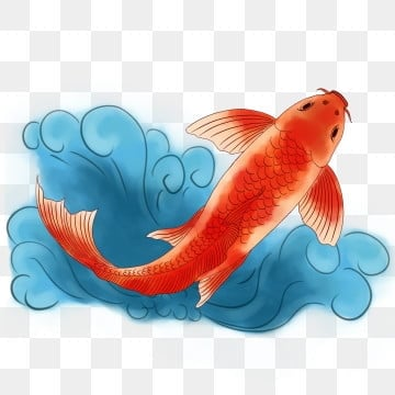 Fish Png Images Download 12000 Fish Png Resources With Transparent Background