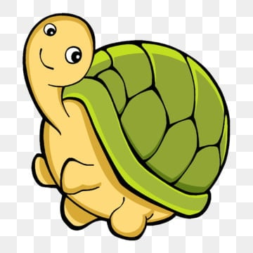 Turtle Png Images Vector And Psd Files Free Download