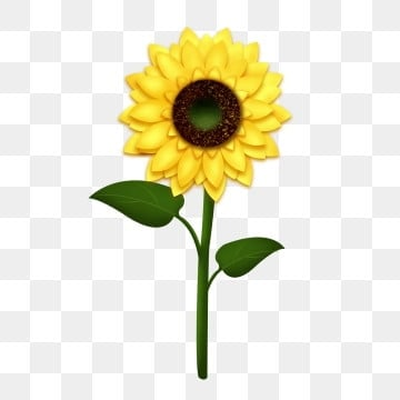 8d84a00c0bba sunflower autumn fresh yellow flowers cartoon decorative pattern flower