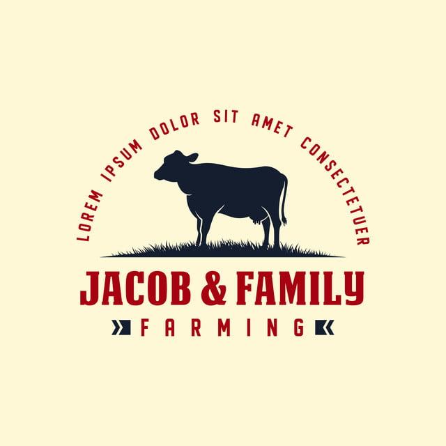 Black Angus Logo Design Template Cow Farm Milk