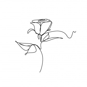 Minimalist Drawing Flowers Minimalist Sketch Plant Png Transparent Clipart Image And Psd File For Free Download