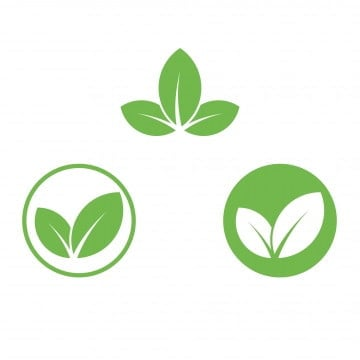 Green Leaf Icon PNG Images | Vector and PSD Files | Free