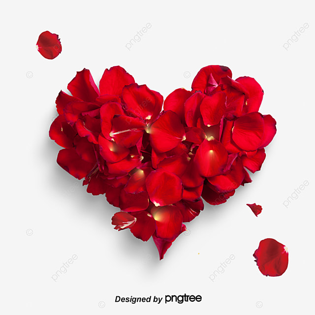 Red Petal Love Vector Material, Heart Shaped, Heart Love, Rose PNG and Vector