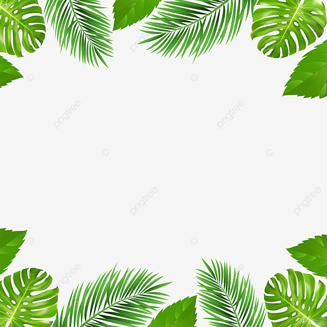 Summer Palm Tree Tropical Flowers Border And Frame