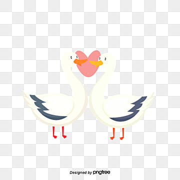 goose lovers on valentines day, Animal, Cartoon, Lovely PNG and Vector