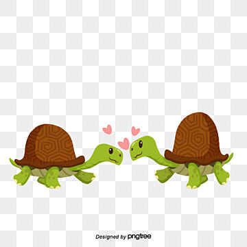 Tortoise couples on Valentines Day, Tortoise, Animal, Cartoon PNG and Vector