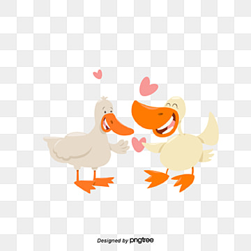 Two Ducks on Valentines Day, Animal, Cartoon, Lovely PNG and Vector
