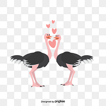 valentines day animal couple element ostrich, Animal, Cartoon, Lovely PNG and Vector