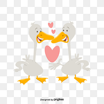Valentines Day Ducks, Animal, Cartoon, Lovely PNG and Vector