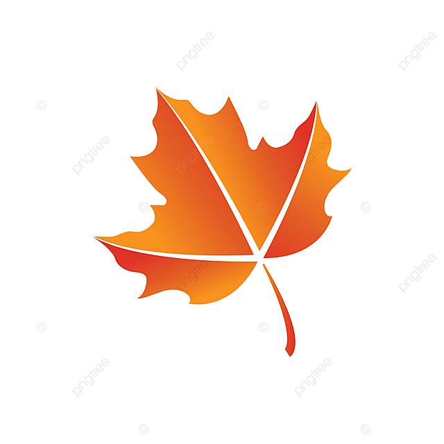 Maple Leaf Logo Icon Design Template Vector Icon Leaf