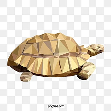 polygonal style tortoise, Realism, Animal, Polygon PNG and Vector